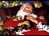 Mr. Claus enjoying his animals!