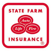 INSURED BY STATE FARM!
