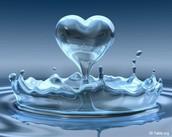 الماء حياة