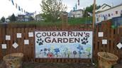 District Community Garden Program Debuts at Cougar Run Elementary