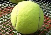 Boshell Tennis Camp