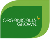 Growers of Premium Blueberries Since 1986!