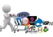 Build Effective e-Commerce Online Store by Hire Magento Developer