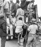 Forced Migration:
