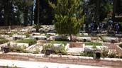 קברות של חיילים