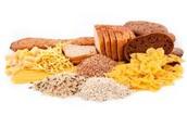Los carbohidrátos