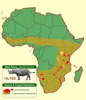 Range of where Black rhinos live.