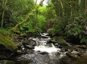 Killarney National Park.