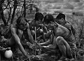 Bushmen [2008]