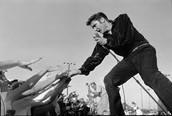 """Elvis Presley in concert. Old school cool."""