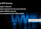 Find Some Great Information About SEO Hosting