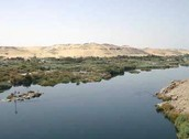 THIS RIGHT HERE IS THE NILE