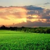 נוף ישראל