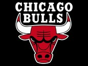 About the Bulls