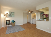 Open concept living/dining area!