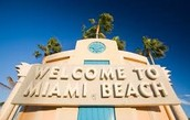 Welcome To the Miami Beach