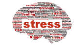 Why is stress bad for your health? What can it lead to?