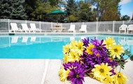 The weather is getting hot! Take a dip in our pool!