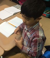 Questions and findings were recorded in our journals.