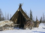 Chum tent