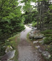 Gorgeous Hike