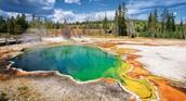 Yellowstone National Park!