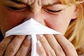 Informaciòn de la gripe a