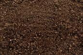 The fertile soil (silt)