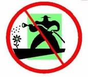 No Fertilizer