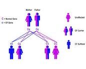 gene chart