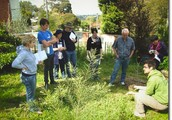 Simplifying Sensible Systems In permaculture class