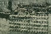 The skull wall