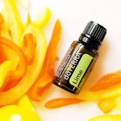FREE Product of the Month: Lime