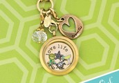 Introducing Origami Owl Living Lockets