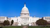 Facts about  legislative bratch