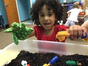Sensory Room (SR): Grace plays with dirt in her garden gloves