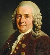 Carolus Linnaeus (1707–1778