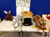 Dramatic Play area-Don't scream-The snake isn't real