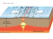 Divergent plate boundary