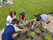 Grow To Serve garden