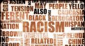 No Racial Slurs