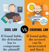 What are the differences between a civil case and a criminal case?