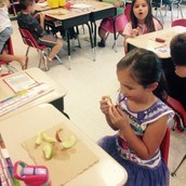 Students tasted red, yellow, and green apples!