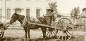 About the Red River Cart