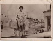 סבתא רבתא בת שבע