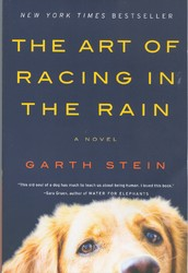 Book Nook: The Art of Racing in the Rain by Garth Stein