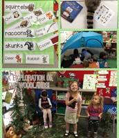 Nancy - Woodlands display