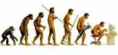 Early Hominini
