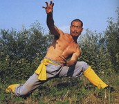 Celebrate the superior form of Xin Yi Kung Fu.
