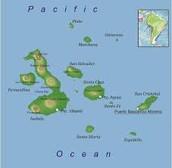 Las Islas de los Galápagos